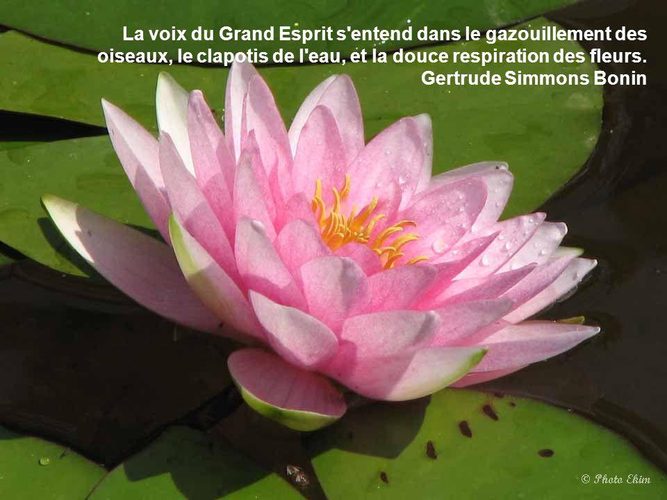 La voix du Grand Esprit s entend dans le gazouillement des oiseaux, le clapotis de l eau, et la douce respiration des fleurs.