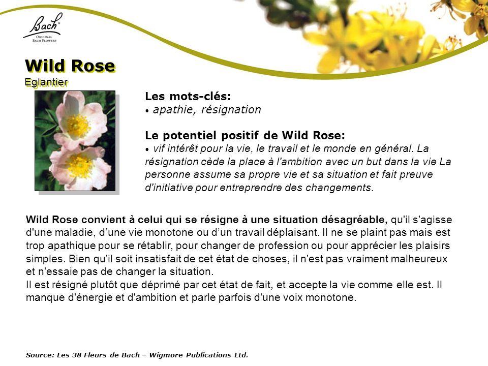 Wild Rose Eglantier Les mots-clés: apathie, résignation