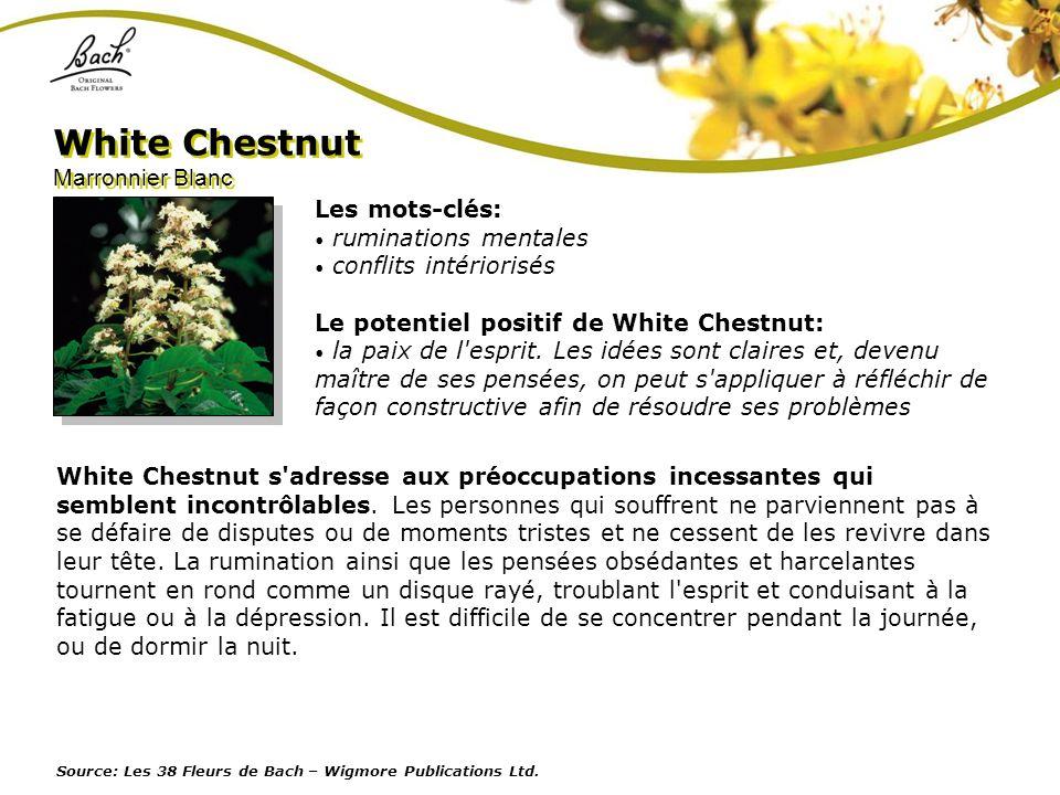 White Chestnut Marronnier Blanc Les mots-clés: ruminations mentales
