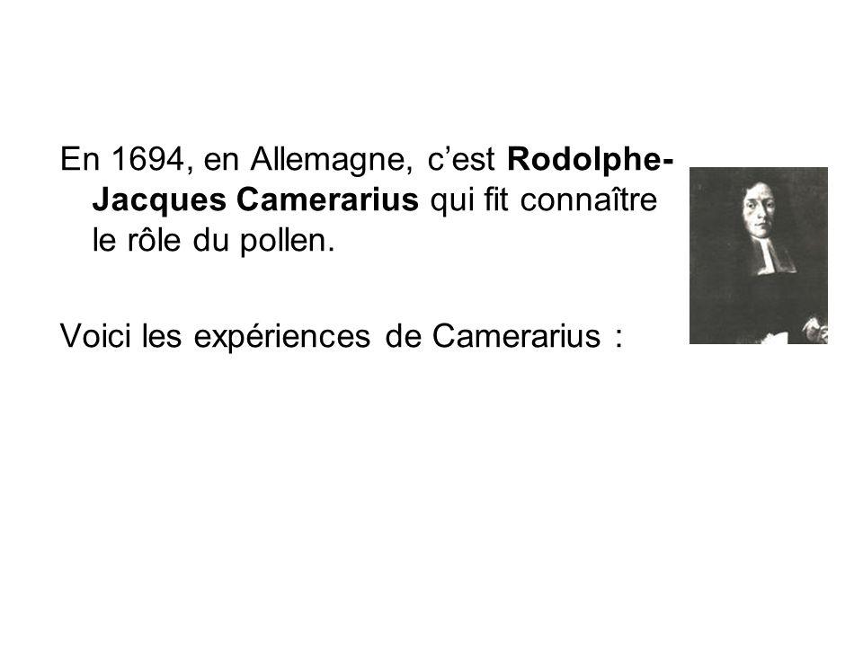 En 1694, en Allemagne, c'est Rodolphe-Jacques Camerarius qui fit connaître le rôle du pollen.