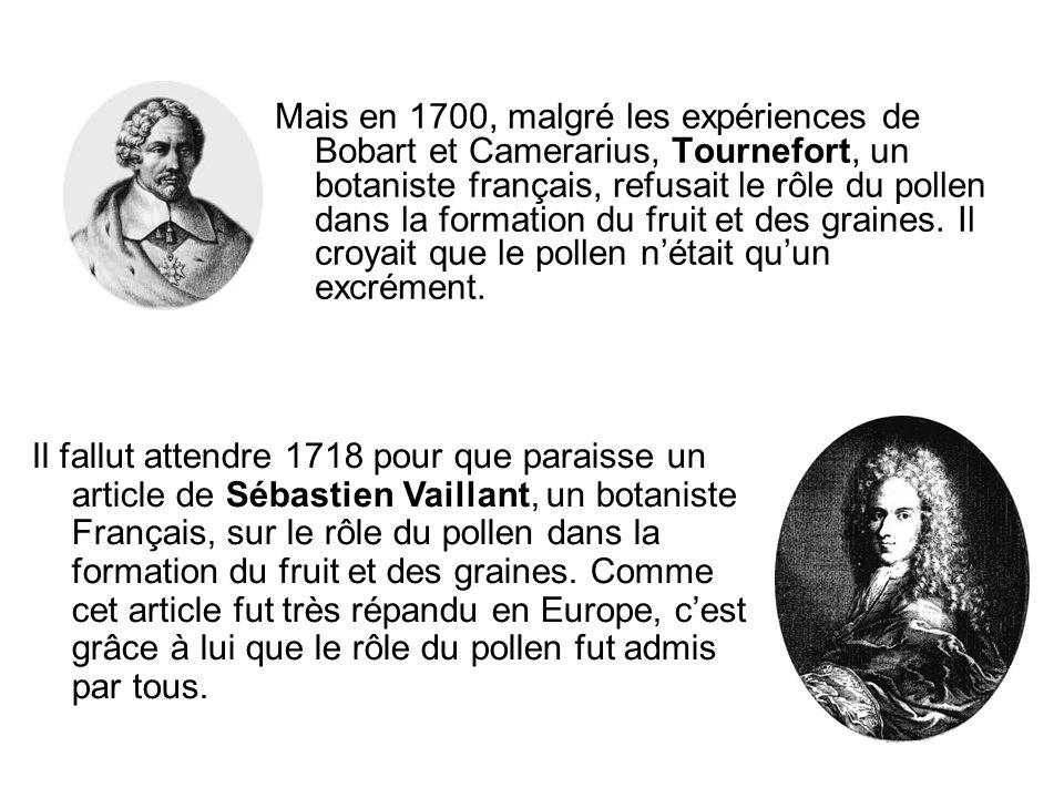 Mais en 1700, malgré les expériences de Bobart et Camerarius, Tournefort, un botaniste français, refusait le rôle du pollen dans la formation du fruit et des graines. Il croyait que le pollen n'était qu'un excrément.
