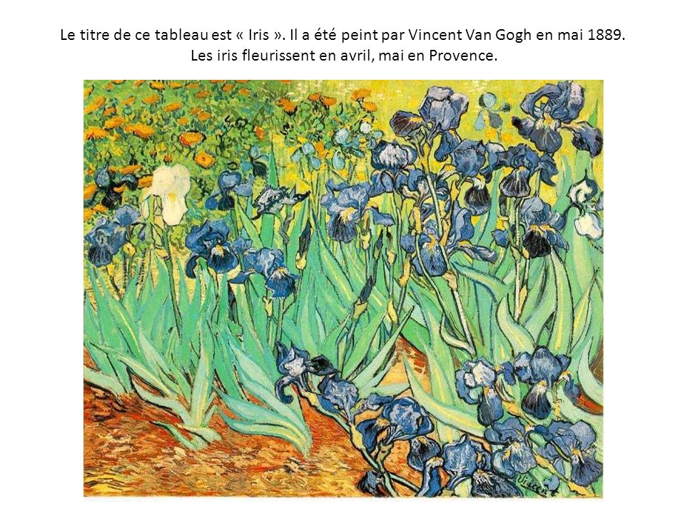 Le titre de ce tableau est « Iris »