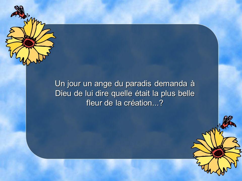 Un jour un ange du paradis demanda à Dieu de lui dire quelle était la plus belle fleur de la création...