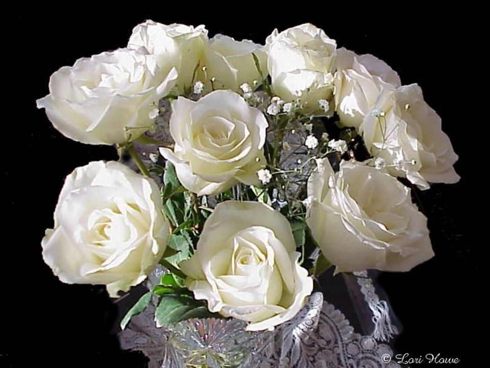 Le blanc symbolise la pureté et la virginité,