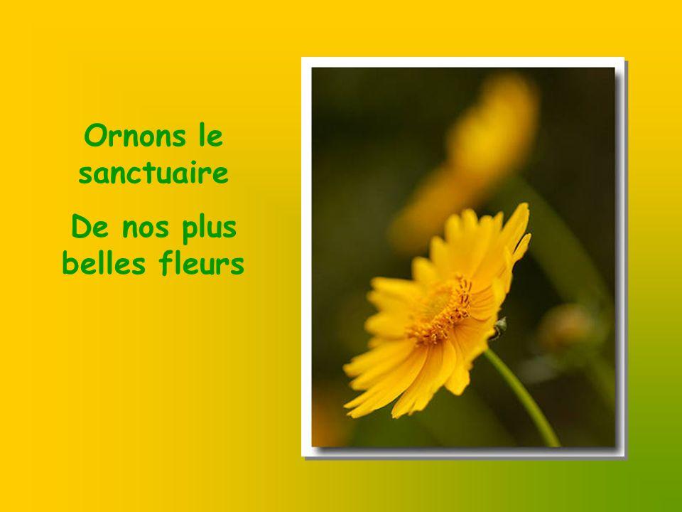 De nos plus belles fleurs