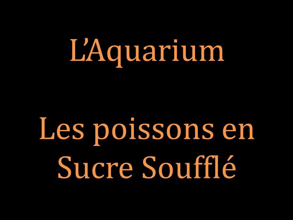 L'Aquarium Les poissons en Sucre Soufflé