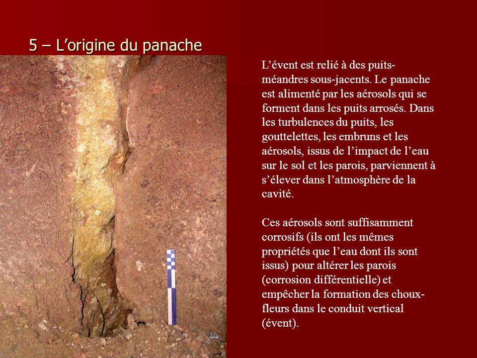 5 – L'origine du panache