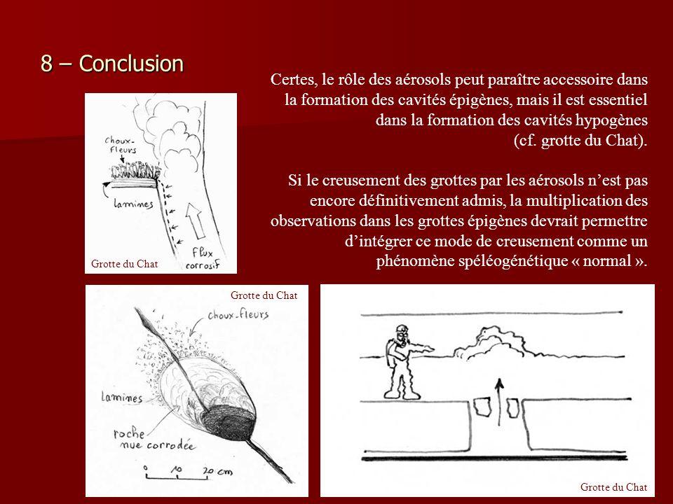 8 – Conclusion