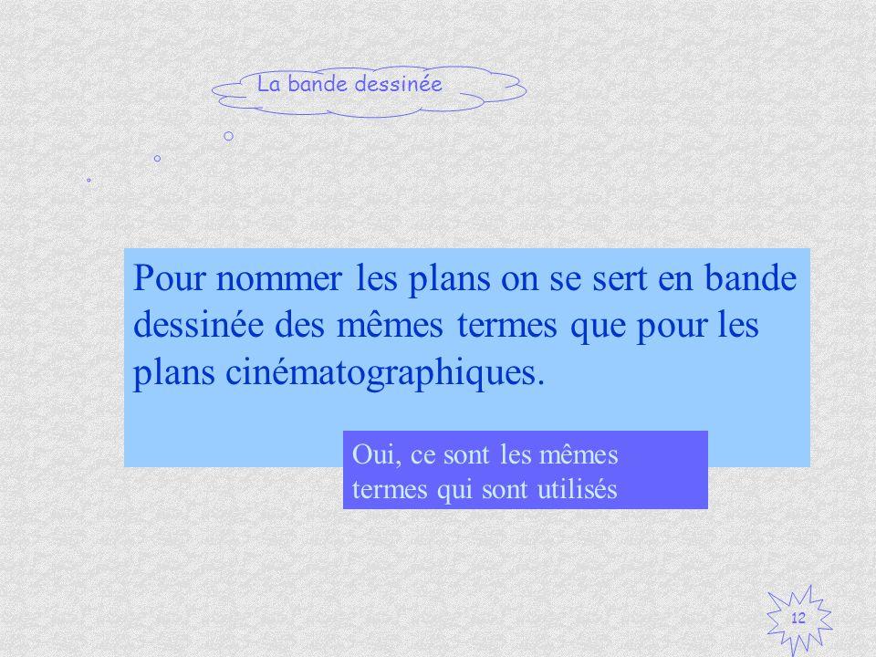 Pour nommer les plans on se sert en bande dessinée des mêmes termes que pour les plans cinématographiques.