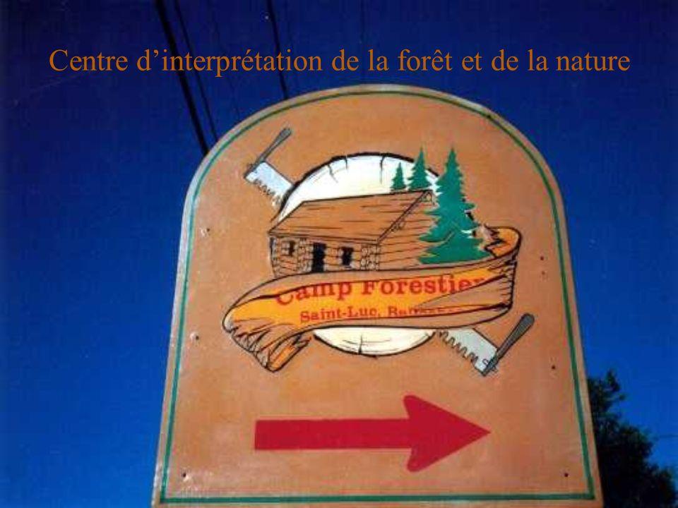 Centre d'interprétation de la forêt et de la nature