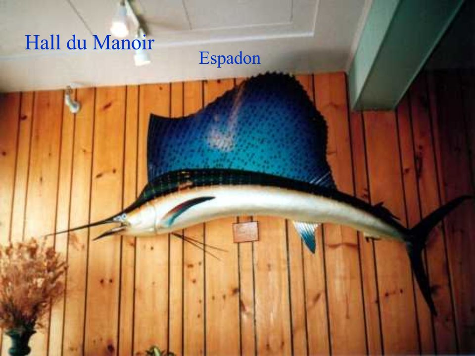 Hall du Manoir Espadon