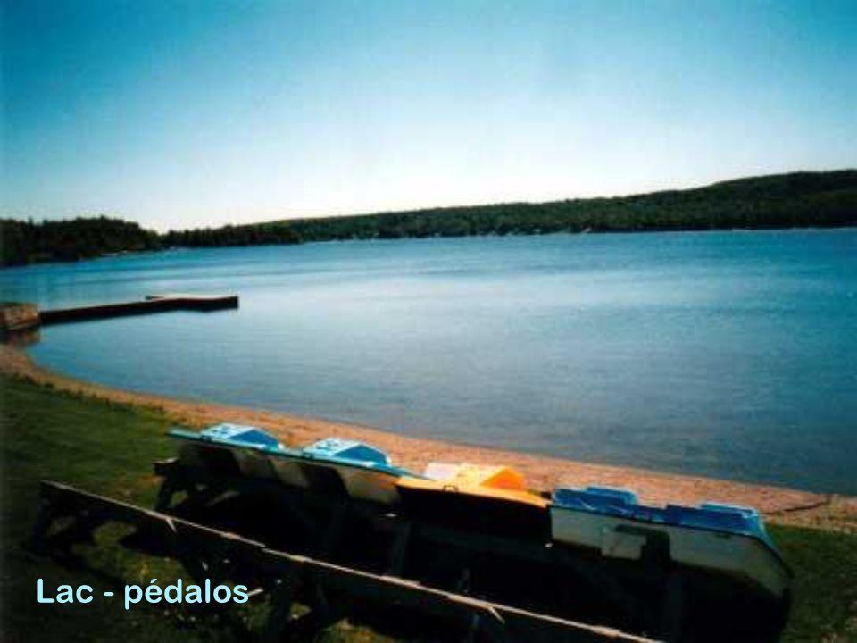 Lac - pédalos