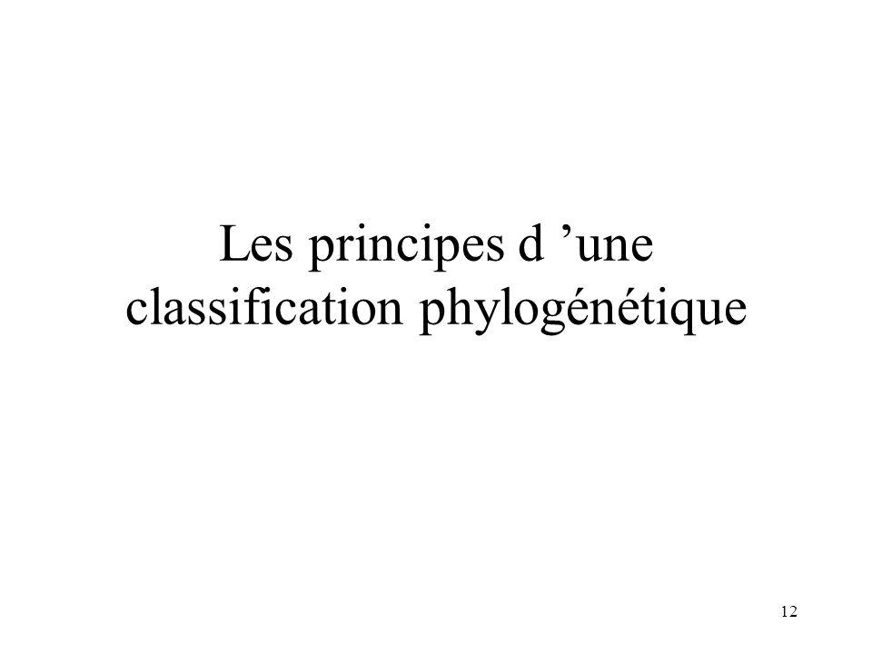 Les principes d 'une classification phylogénétique