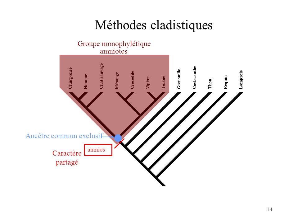 Méthodes cladistiques