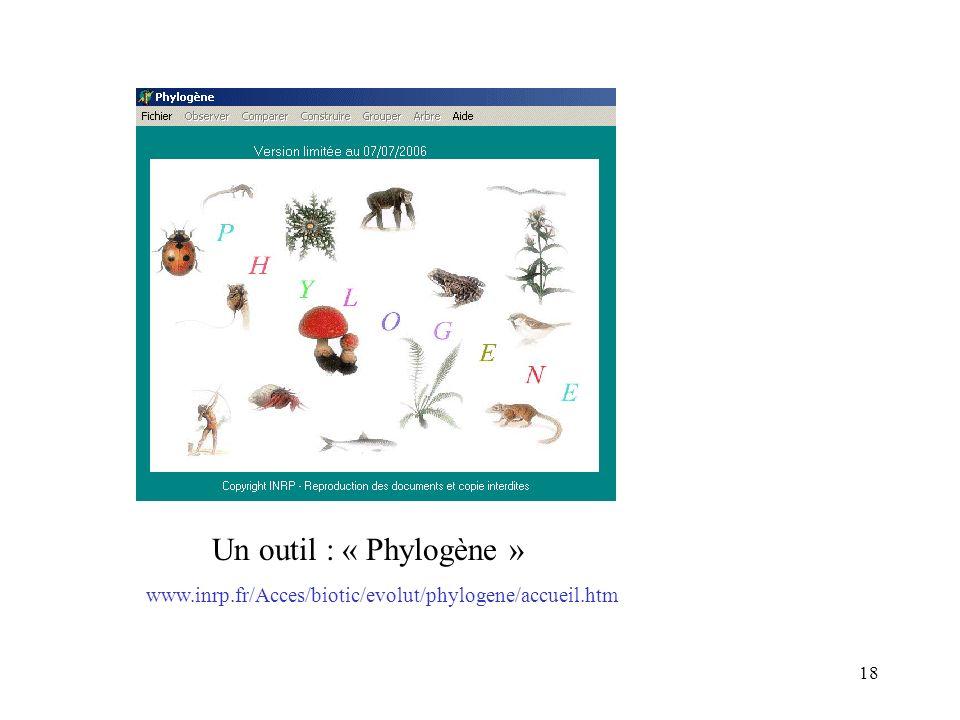 Un outil : « Phylogène » www.inrp.fr/Acces/biotic/evolut/phylogene/accueil.htm