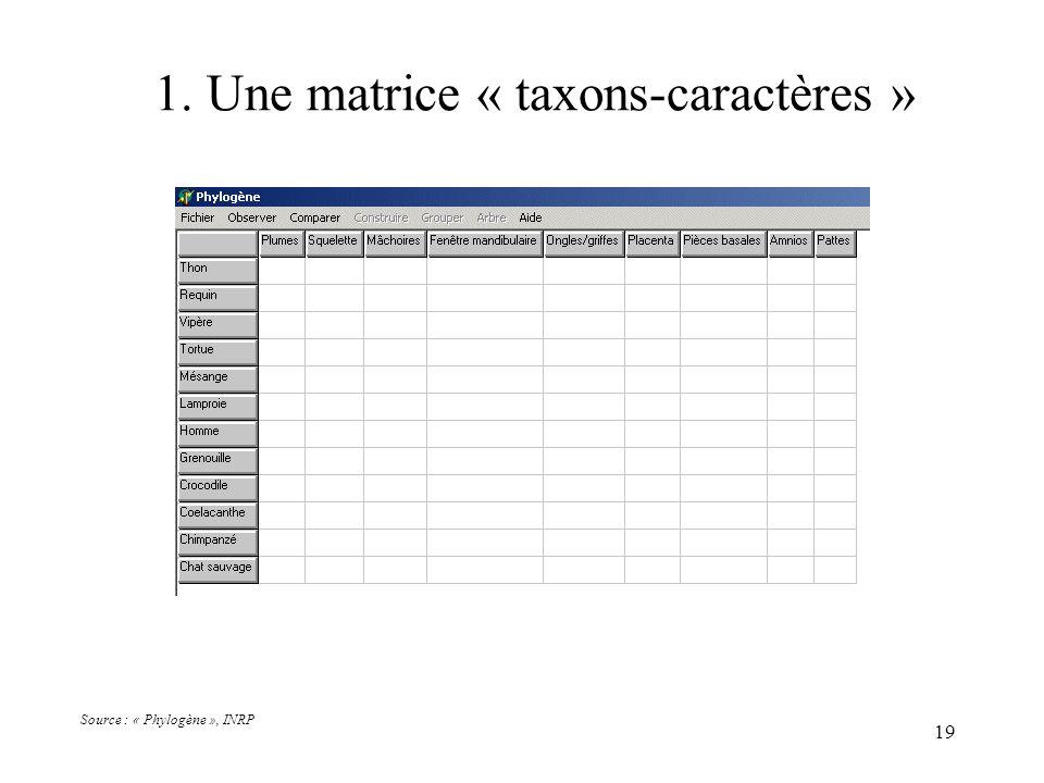 1. Une matrice « taxons-caractères »