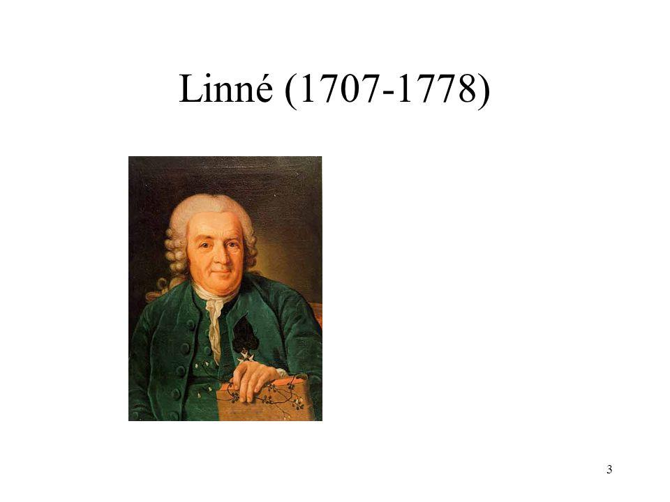 Linné (1707-1778)