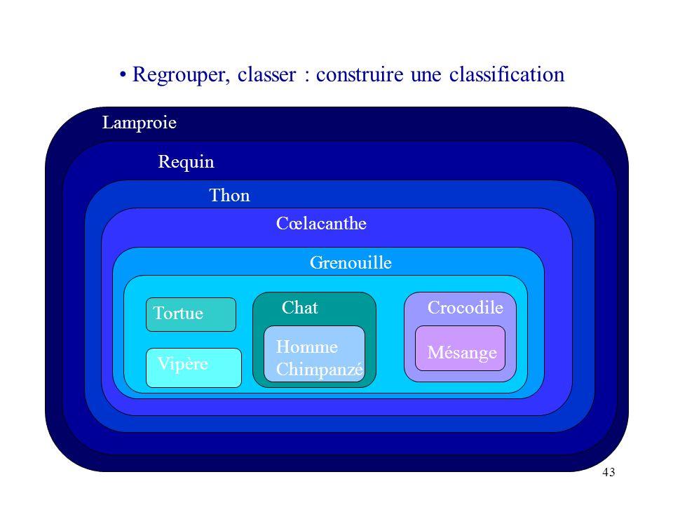 Regrouper, classer : construire une classification