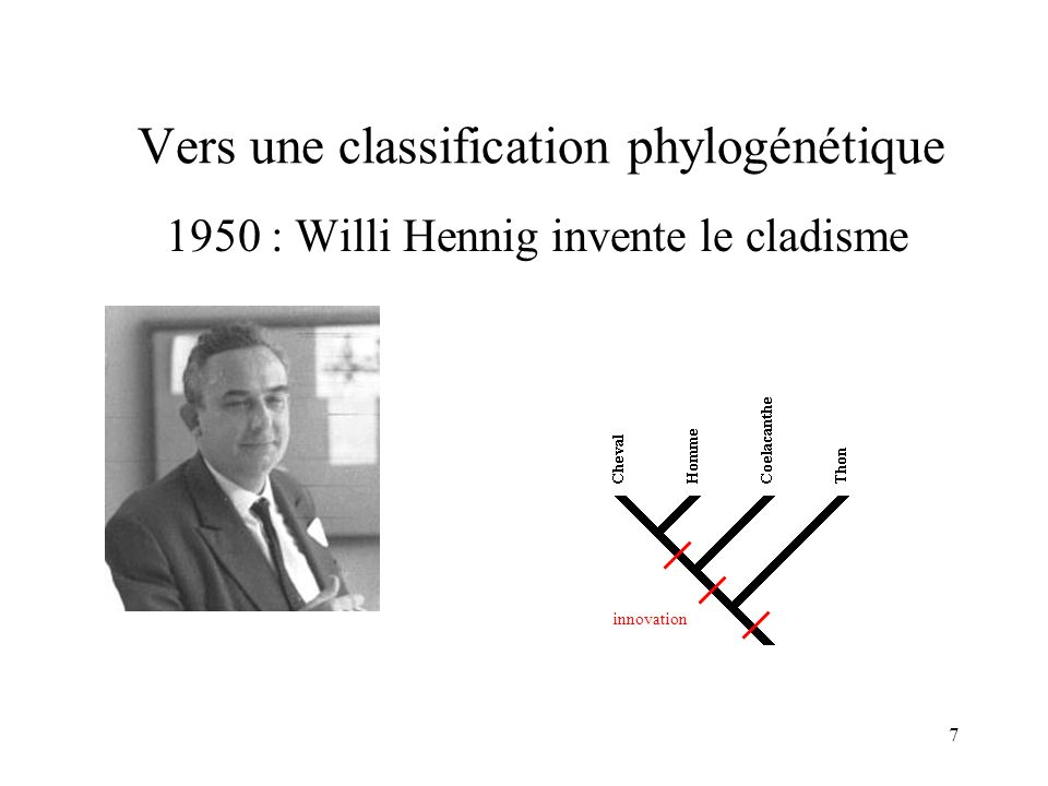 Vers une classification phylogénétique