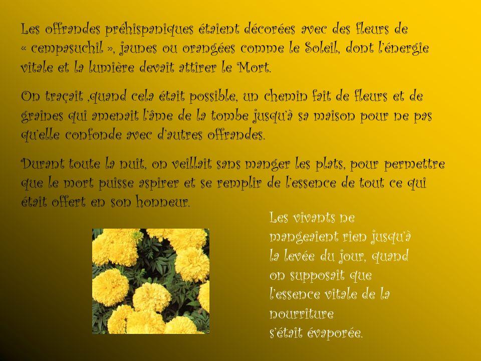Les offrandes préhispaniques étaient décorées avec des fleurs de « cempasuchil », jaunes ou orangées comme le Soleil, dont l'énergie vitale et la lumière devait attirer le Mort.
