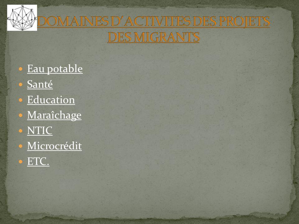 DOMAINES D'ACTIVITES DES PROJETS DES MIGRANTS