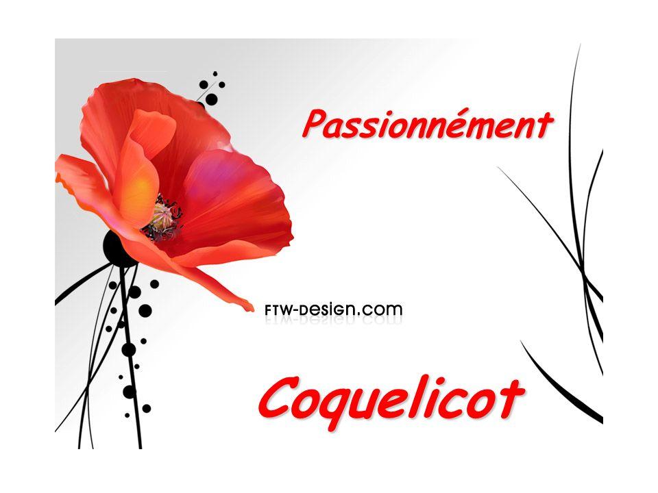 Passionnément Coquelicot