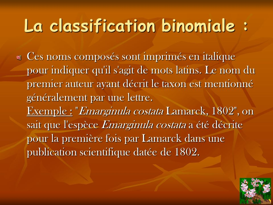 La classification binomiale :