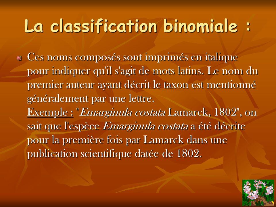 La classification binomiale :