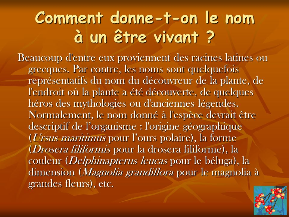 Comment donne-t-on le nom à un être vivant