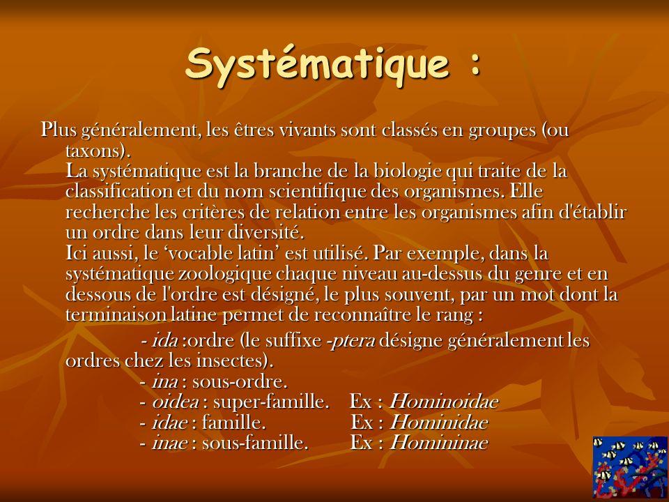 Systématique :