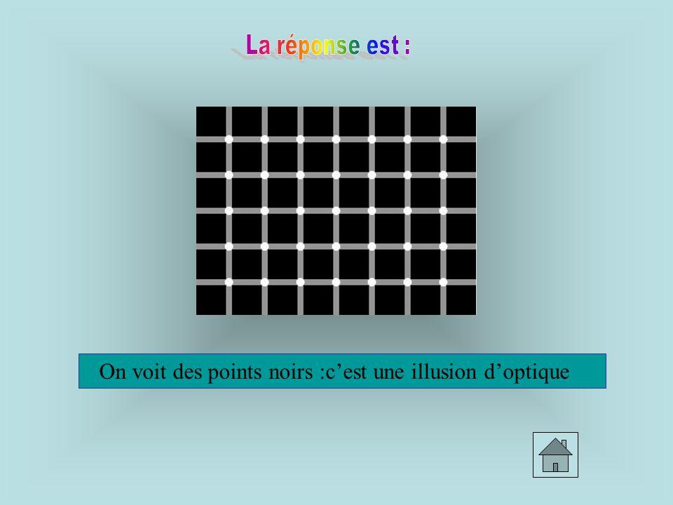 On voit des points noirs :c'est une illusion d'optique