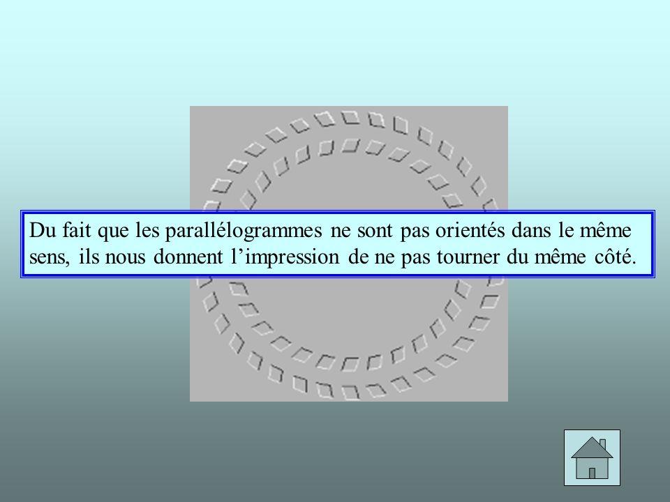 Du fait que les parallélogrammes ne sont pas orientés dans le même sens, ils nous donnent l'impression de ne pas tourner du même côté.