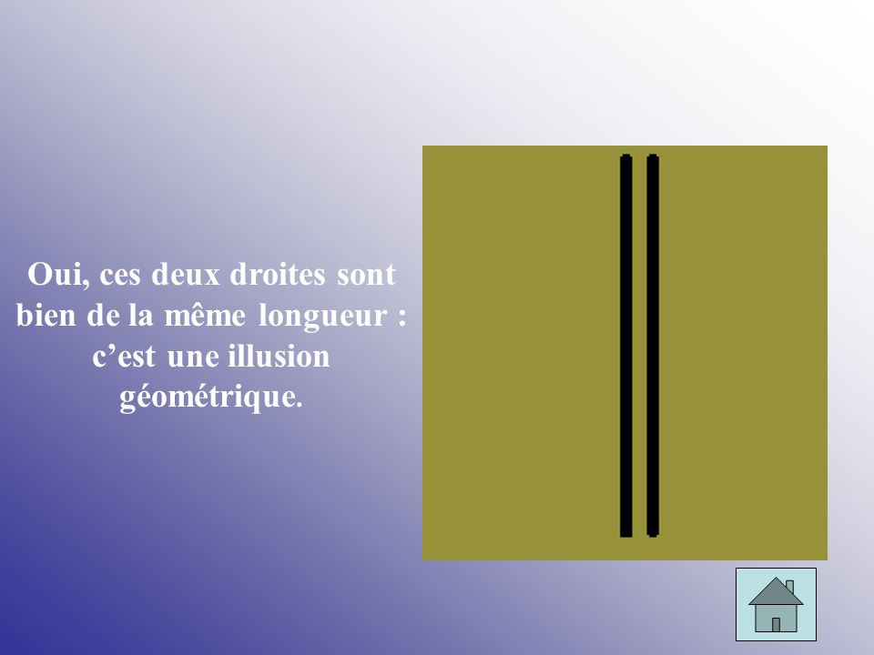 Oui, ces deux droites sont bien de la même longueur : c'est une illusion géométrique.