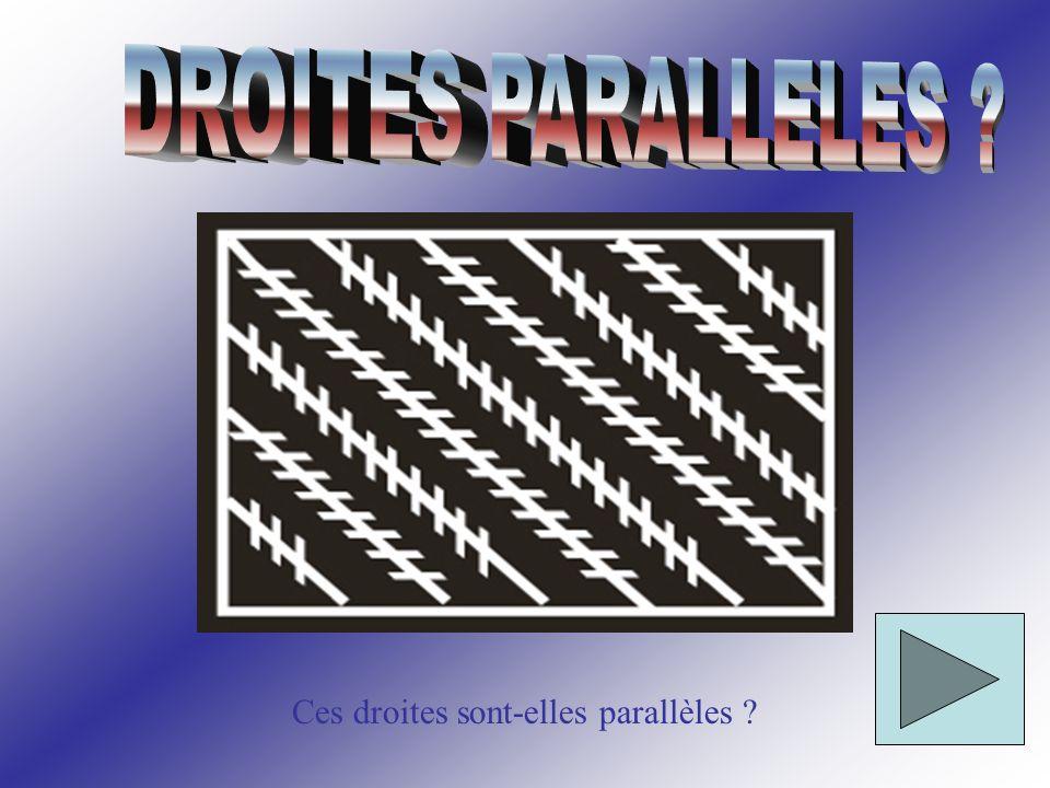 Ces droites sont-elles parallèles