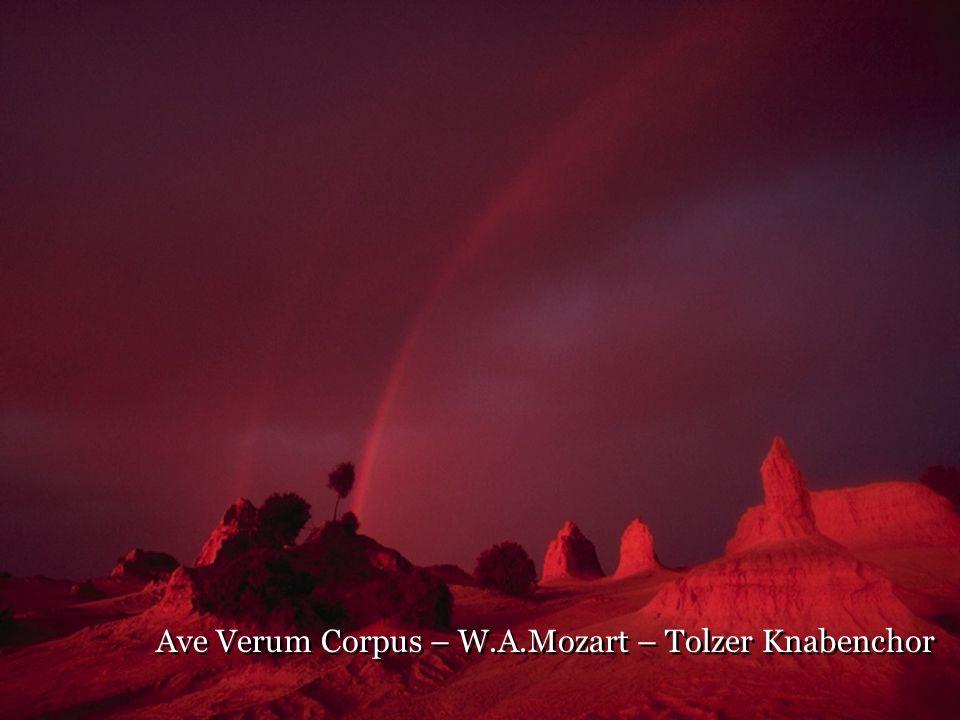 Ave Verum Corpus – W.A.Mozart – Tolzer Knabenchor