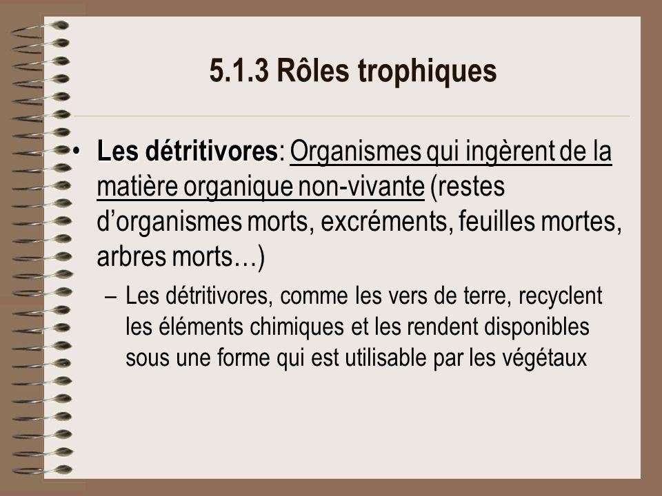 5.1.3 Rôles trophiques