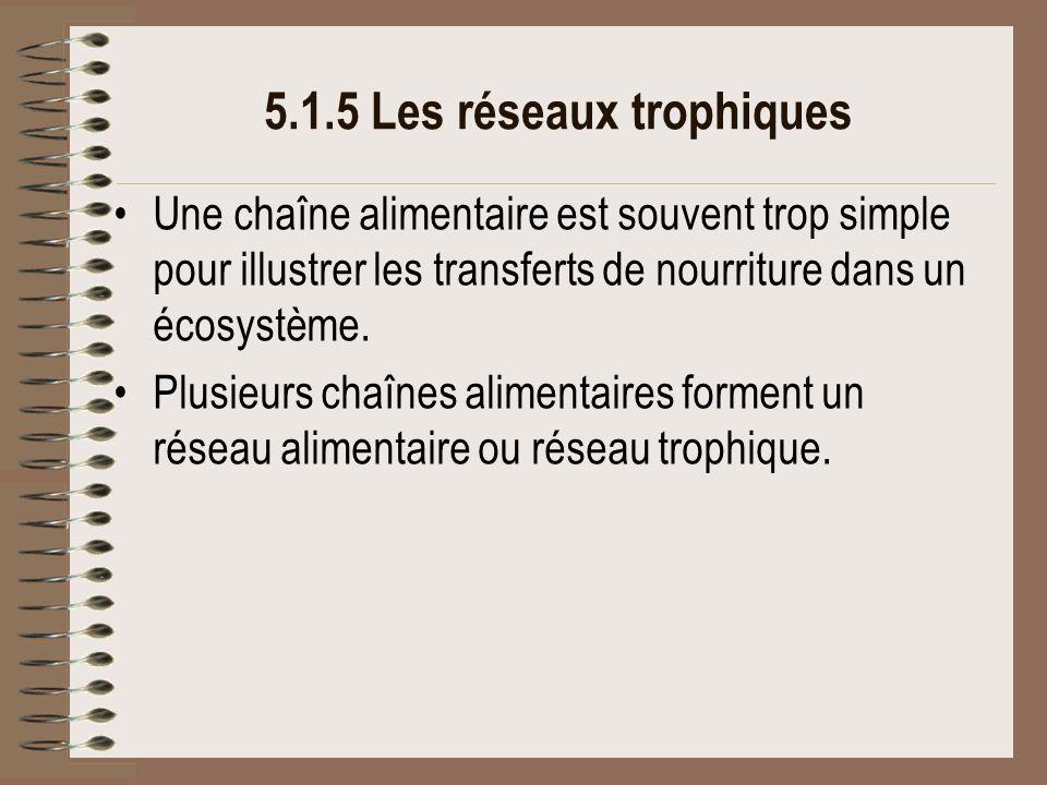 5.1.5 Les réseaux trophiques