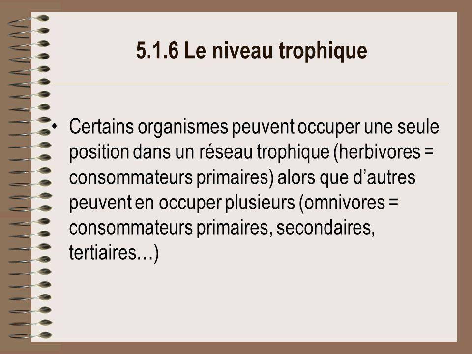 5.1.6 Le niveau trophique