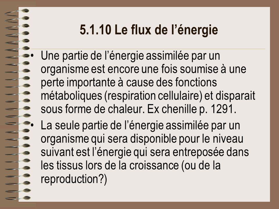 5.1.10 Le flux de l'énergie