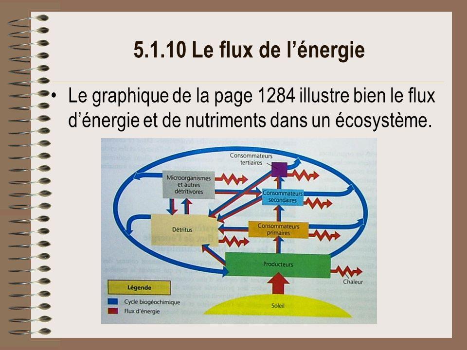 5.1.10 Le flux de l'énergie Le graphique de la page 1284 illustre bien le flux d'énergie et de nutriments dans un écosystème.