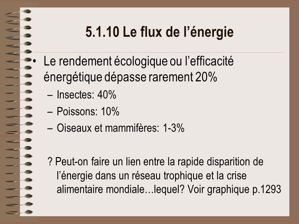 5.1.10 Le flux de l'énergie Le rendement écologique ou l'efficacité énergétique dépasse rarement 20%