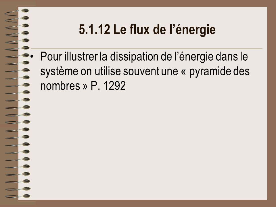 5.1.12 Le flux de l'énergie Pour illustrer la dissipation de l'énergie dans le système on utilise souvent une « pyramide des nombres » P.