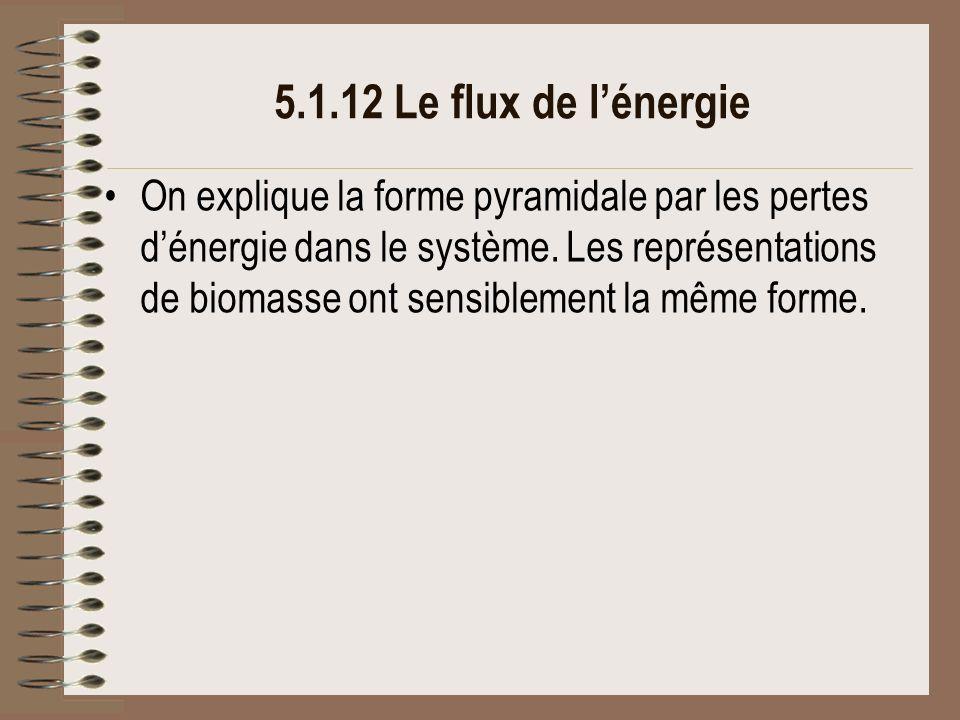 5.1.12 Le flux de l'énergie