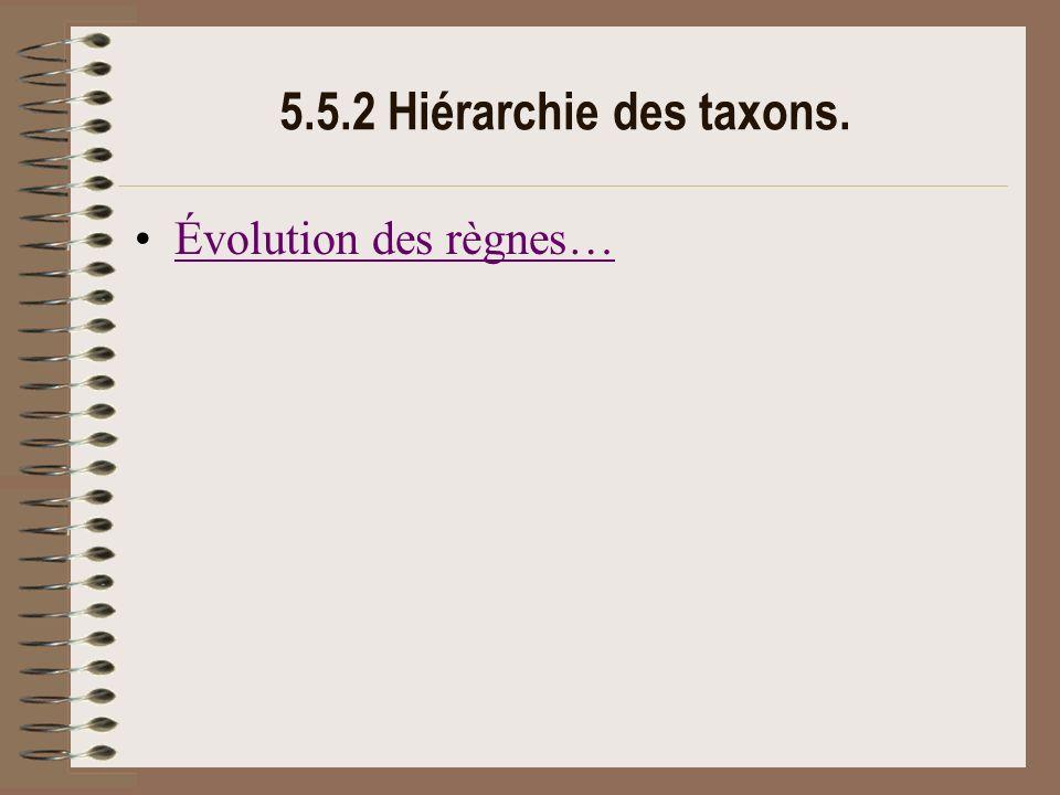 5.5.2 Hiérarchie des taxons. Évolution des règnes…