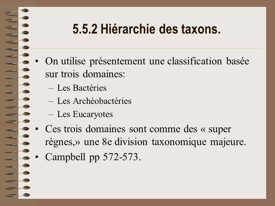 5.5.2 Hiérarchie des taxons. On utilise présentement une classification basée sur trois domaines: Les Bactéries.