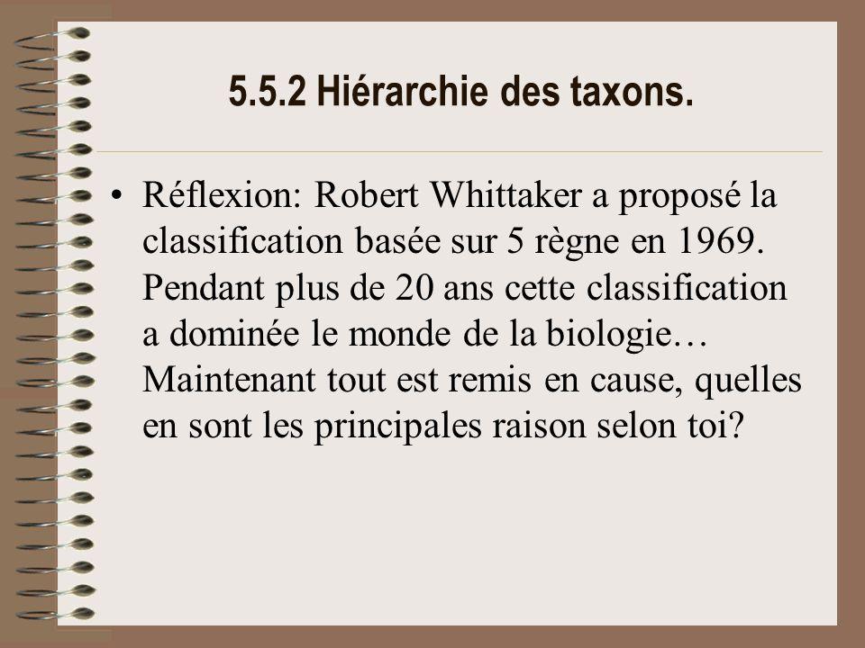 5.5.2 Hiérarchie des taxons.