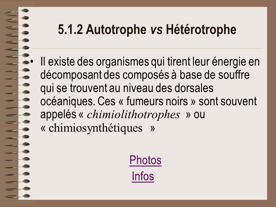 5.1.2 Autotrophe vs Hétérotrophe