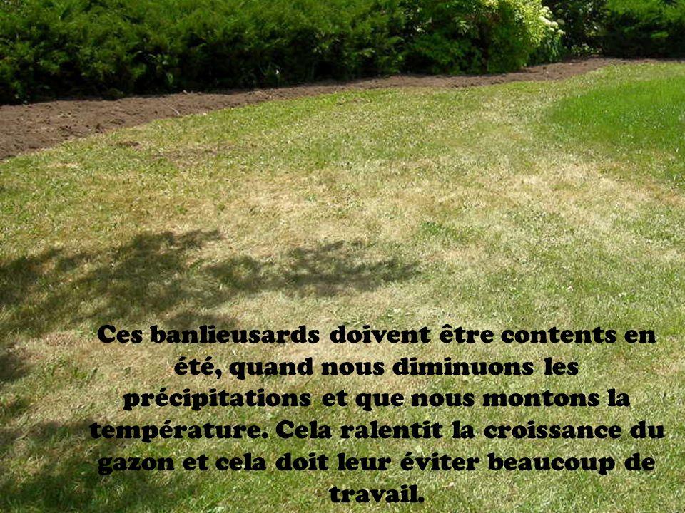 Ces banlieusards doivent être contents en été, quand nous diminuons les précipitations et que nous montons la température.