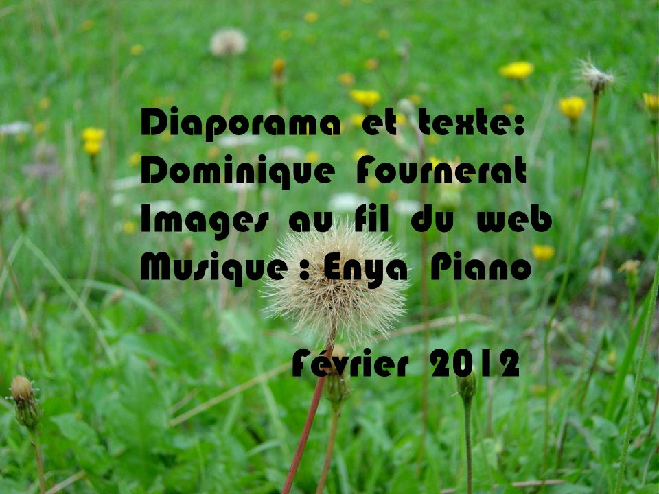 Diaporama et texte: Dominique Fournerat. Images au fil du web.