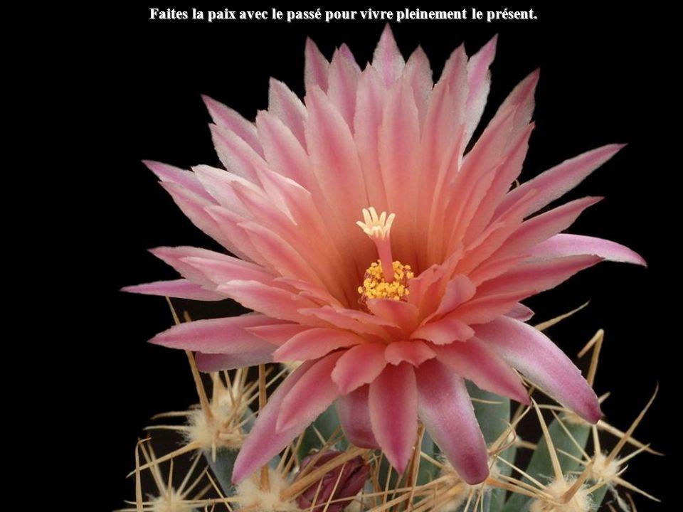 Faites la paix avec le passé pour vivre pleinement le présent.